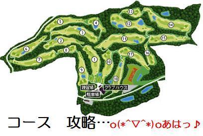 Course_layout_2