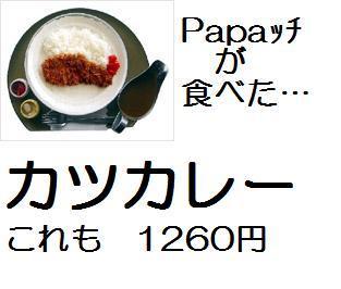 Katsucurry